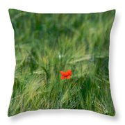 Field Of Wheat With A Solitary Poppy. Throw Pillow by Bernard Jaubert