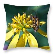 Firefly Fornication Throw Pillow by Douglas Barnett