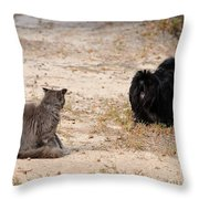 First Impressions Throw Pillow by Al Powell Photography USA