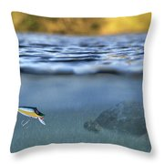 fishing lure in use Throw Pillow by Meirion Matthias