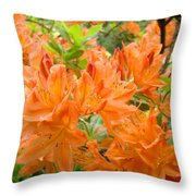 Floral Art Prints Orange Rhodies Flowers Throw Pillow by Baslee Troutman