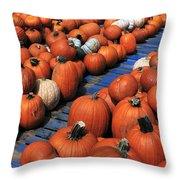 Florida Gator Pumpkins Throw Pillow by David Lee Thompson
