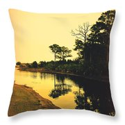 Florida Landscape II Throw Pillow by Susanne Van Hulst