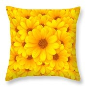 Flower Background Throw Pillow by Carlos Caetano