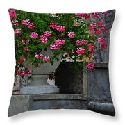 Flowers On The Steps Throw Pillow by Mary Machare