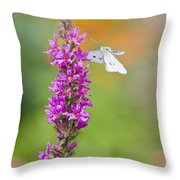 Flying Butterfly Throw Pillow by Melanie Viola
