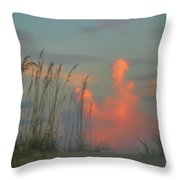 Foggy Oats Throw Pillow by Kristin Elmquist