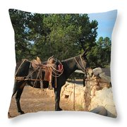 For The Ride Down Throw Pillow by Heidi Smith