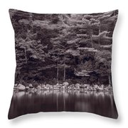 Forest At Jordan Pond Acadia Bw Throw Pillow by Steve Gadomski