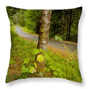 Forest Escape Throw Pillow by Idaho Scenic Images Linda Lantzy