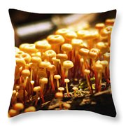 Forest Trifles Throw Pillow by Rebecca Sherman
