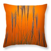 Fountain Grass In Orange Throw Pillow by Steve Gadomski