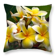 Fragrant Blossoms Of The Pagoda Tree Throw Pillow by Yali Shi