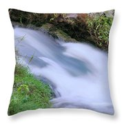 Freely Flowing Throw Pillow by Kristin Elmquist