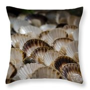 Fresh From The Sea Throw Pillow by Heather Applegate