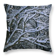 Fresh Snowfall Blankets Tree Branches Throw Pillow by Tim Laman