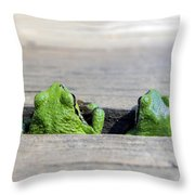 Friends Throw Pillow by Derek Holzapfel