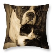 Friendship Is The Greatest Gift Of All Greeting Throw Pillow by DigiArt Diaries by Vicky B Fuller
