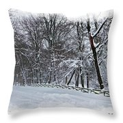 Frigid Throw Pillow by Brian Wallace