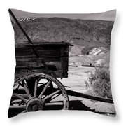 From The Good Old Days Throw Pillow by Susanne Van Hulst