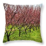Fruit Orchard Throw Pillow by Elena Elisseeva