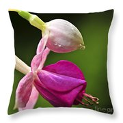 Fuchsia flower Throw Pillow by Elena Elisseeva