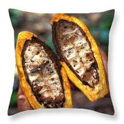 Fungal Infection Of Cacao Throw Pillow by Science Source