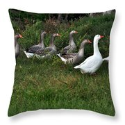 Gaggle Of Geese Throw Pillow by Kaye Menner