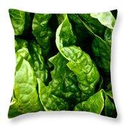 Garden Fresh Throw Pillow by Susan Herber
