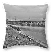 Geese Along The Schuylkill River Throw Pillow by Bill Cannon
