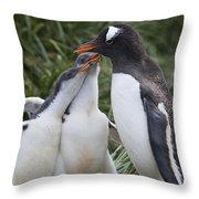 Gentoo Penguin Parent And Two Chicks Throw Pillow by Suzi Eszterhas