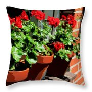 Geraniums In Germany Throw Pillow by Carol Groenen