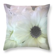Gerbera Softness       Throw Pillow by Kaye Menner