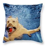 Getting Closer Throw Pillow by Jill Reger