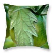 Getting There Throw Pillow by Chris Berry