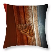 Ghostly Visage Throw Pillow by Susan Capuano