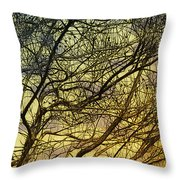 Ghosts of Crape Myrtles Throw Pillow by Judi Bagwell