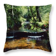 Glenleigh Gardens, Co Tipperary Throw Pillow by The Irish Image Collection