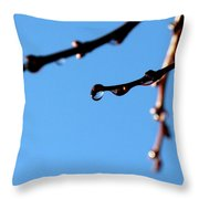 Glistening Dewdrops Throw Pillow by Will Borden