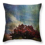 Glory Throw Pillow by Laurie Search