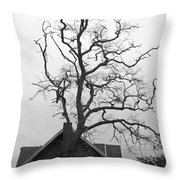 Gnarled Throw Pillow by Pamela Patch