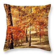 Golden Path Throw Pillow by Jai Johnson