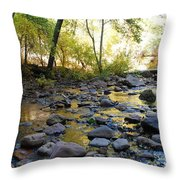 Golden Reflection In The Canyon Of  Light Throw Pillow by Heather Kirk