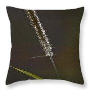 Grass Spikelet Throw Pillow by Heiko Koehrer-Wagner