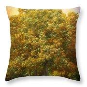 Graves Grove Throw Pillow by Jai Johnson