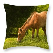 Grazing Horse Throw Pillow by Charuhas Images