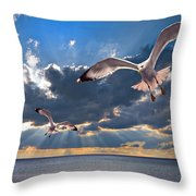 greek gulls with sunbeams Throw Pillow by Meirion Matthias