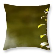 Green Morning Throw Pillow by LeeAnn McLaneGoetz McLaneGoetzStudioLLCcom