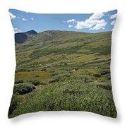 Guanella Pass Horizon Throw Pillow by Michael Kirsh