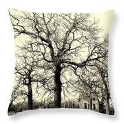 Haunted Homestead Throw Pillow by Joe Jake Pratt